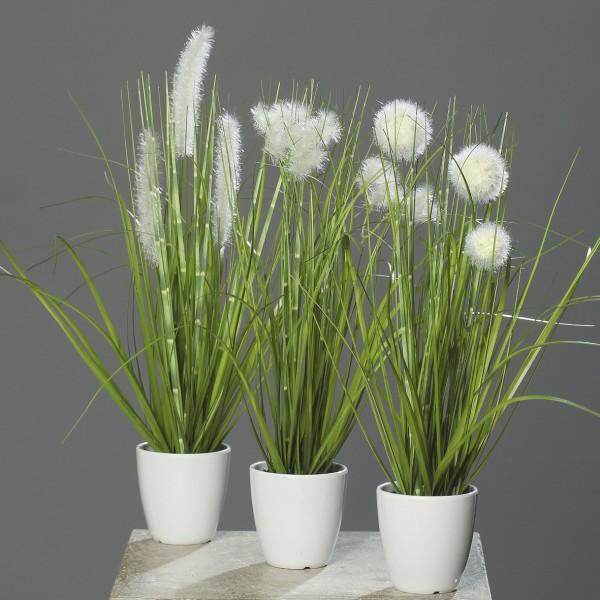 3er Gras-Set 36cm im weißen Dekotopf DP Kunstpflanzen Kunstgras Dekogras künstliches Gras Grasbusch