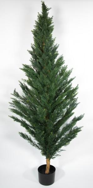 Zeder / Konifere Natura 210cm LA künstliche Pflanzen Kunstpflanzen Kunstbaum Thuja Zypresse