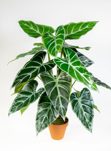 Black Taro Pflanze Real Touch 60cm im Topf ZJ Kunstpflanzen künstlice Pflanzen Schwarze Colocasia