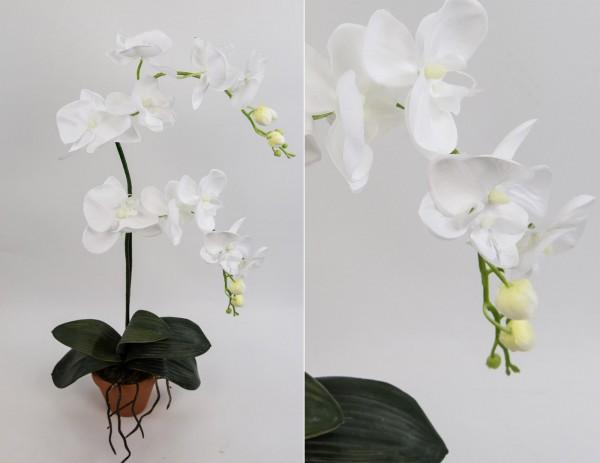 Orchidee Deluxe rein-weiß AD Kunstblumen künstliche Orchideen