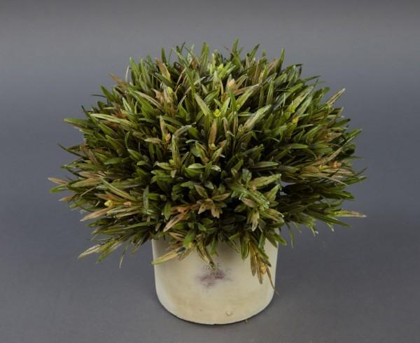 Podocarpus im Dekotopf 24x20cm GA Kunstpflanzen künstliche Pflanzen