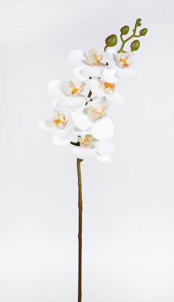 Orchideenzweig Real Touch 62cm weiß ZJ Kunstblumen künstliche Orchidee Orchideen Blumen
