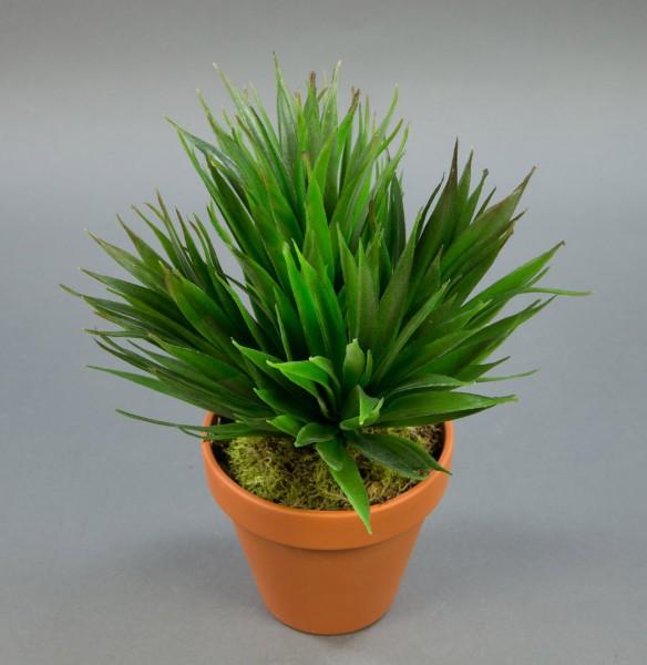 Kanarischer Agavenbusch 28cm im Topf GA künstliche Agave künstliche Pflanzen Kunstpflanzen