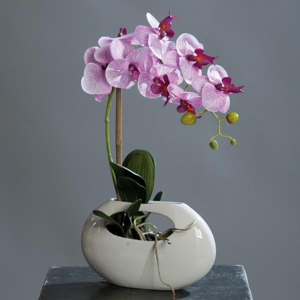 Orchidee 60cm fuchsia-creme in weißer Keramikvase DP Kunstblumen künstliche Blumen Kunstpflanzen