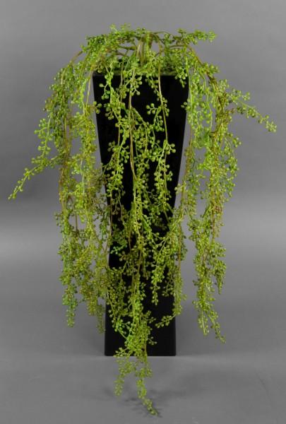 Sedumranke 70cm CG künstliche Pflanzen Ranken Kunstrpflanzen