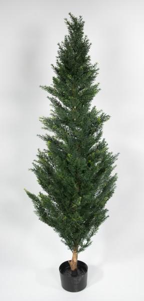 Zeder / Konifere Natura 180cm LA künstliche Pflanzen Kunstpflanzen Kunstbaum Thuja Zypresse