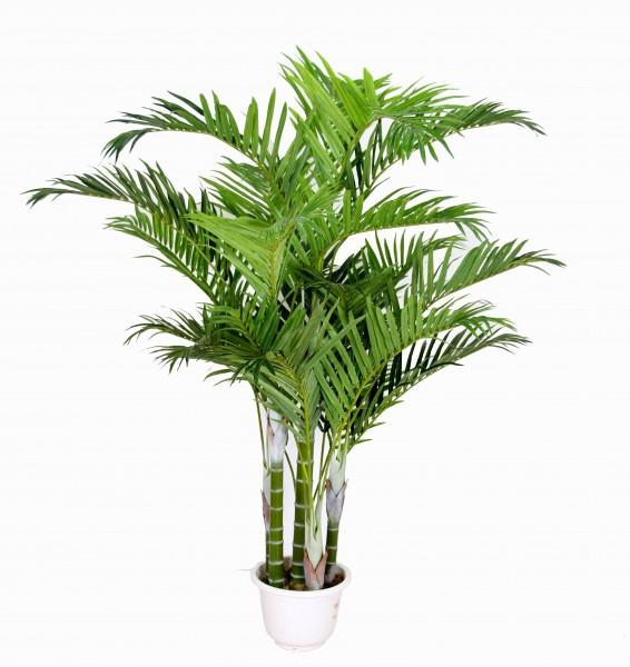 Arekapalme Deluxe 220cm bis 240cm ZJ künstliche Palmen Kunstpalmen Kunstpflanzen Dekopalme