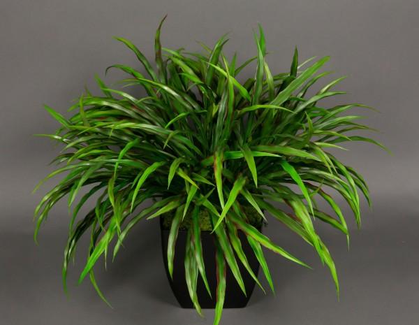 Dracenabusch 48x38cm grün-rot im schwarzen Dekotopf YF Kunstpflanzen künstliche Dracena Kunstpalmen