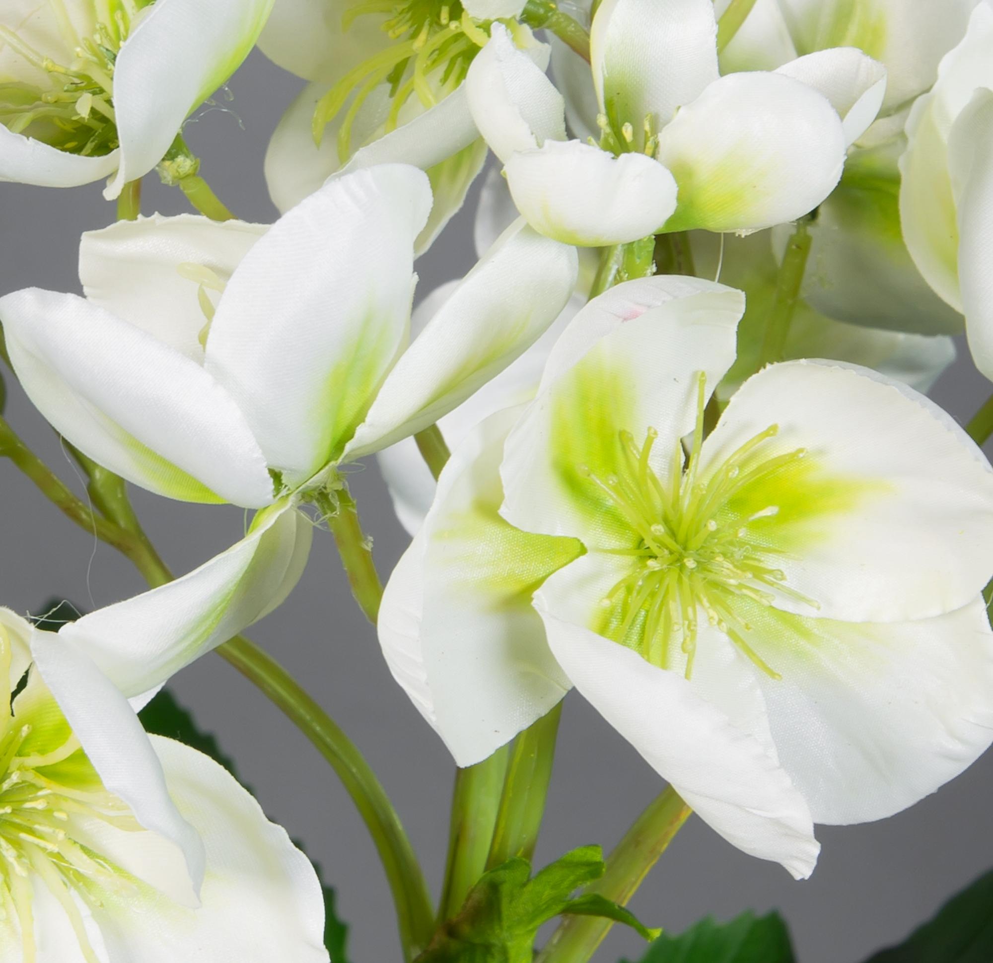 Christrose Natural 58x45cm weiß GA Kunstblumen künstliche ...