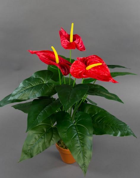 Große Anthurie Real Touch 54cm im Topf ZF Kunstpflanzen künstliche Blumen Pflanzen Anthurie