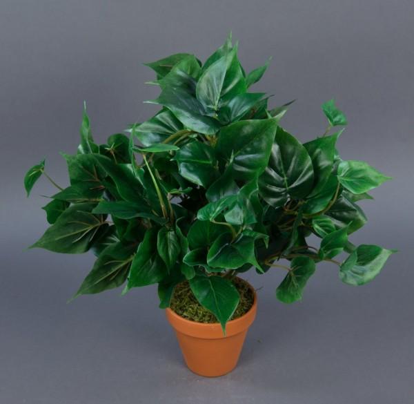 Philobusch kleinblättrig 40cm im Topf GA Kunstpflanzen künstliche Pflanzen künstlicher Philo