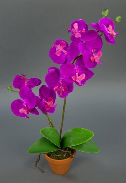 Orchidee Real Touch 60cm fuchsia im Topf GA künstliche Blumen Orchideen Kunstpflanzen Kunstblumen