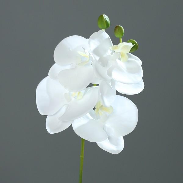 Orchideenzweig Real Touch 36cm weiß DP Kunstblumen künstliche Orchidee Orchideen Blumen Seidenblumen