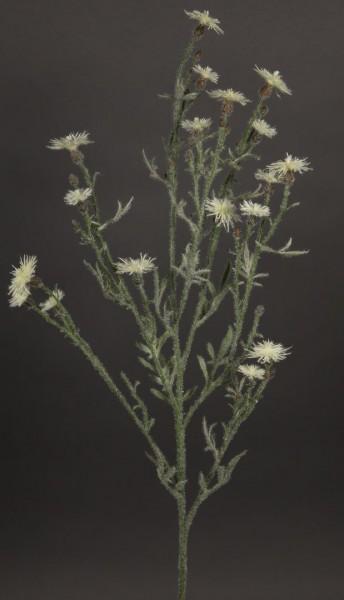 Distelzweig 80cm weiß-creme AR Kunstblumen künstliche Distel Blume