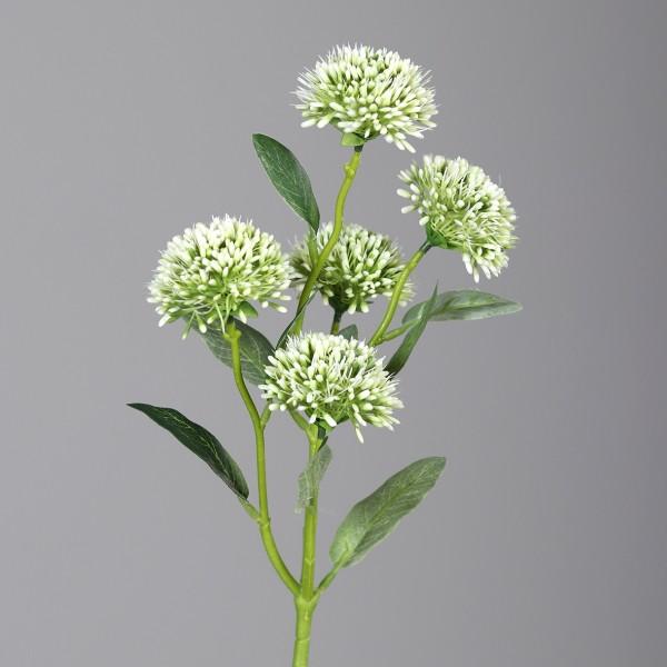Alliumzweig mit 5 Blüten 56cm weiß DP Kunstblumen künstliche Blumen Allium Lauch