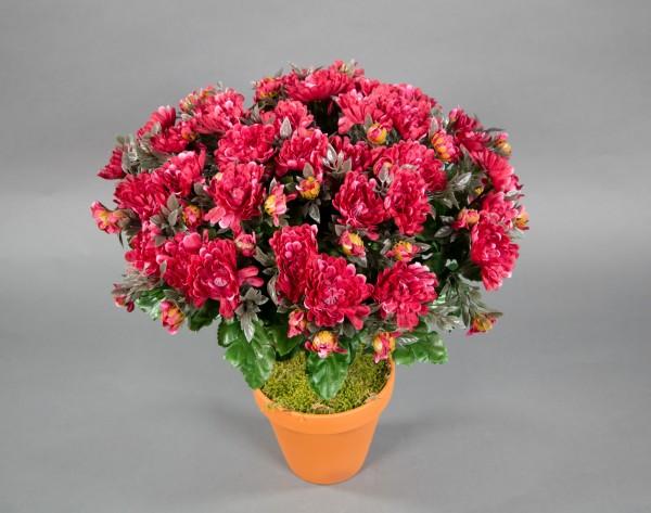 Chrysantheme 40cm dunkelrot im Topf LM Kunstpflanze künstliche Pflanze Kunstblume Chrysanthemenbusch