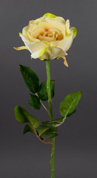 Bogota-Rose 56cm peach-creme DP Kunstblumen Seidenblumen künstliche Blumen Rose