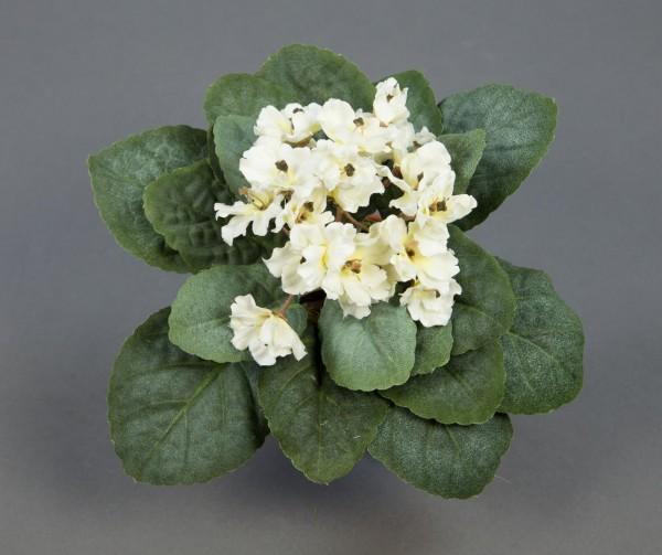 Usambaraveilchen 22x14cm creme -ohne Topf- GA künstliche Veilchen Kunstpflanzen Kunstblumen