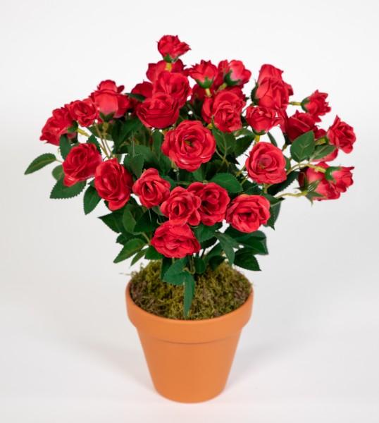 Rosenbusch 30cm rot im Topf ZF Kunstpflanzen Kunstblumen künstliche Blumen Rosenstrauch Rosen