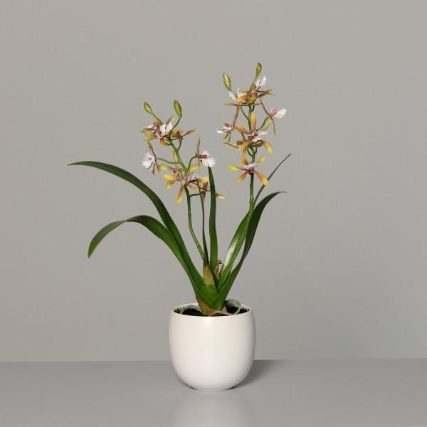 Orchidee 40x30cm orange-gelb im weißen Keramiktopf DP Kunstblumen künstliche Blumen Kunstpflanzen