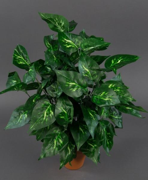 Photospflanze 50cm grün-gelb im Topf ZJ Kunstpflanzen künstliche Pflanzen Photos