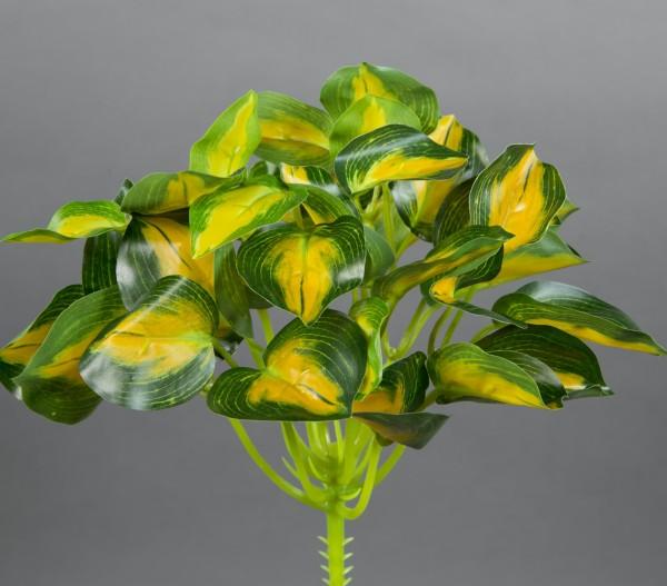 Buntnessel 22cm grün-gelb ZF Kunstpflanzen künstliche Pflanzen Nessel
