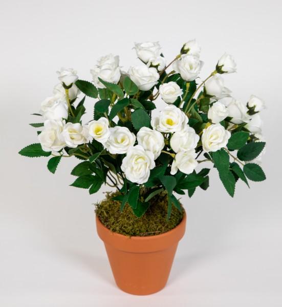 Rosenbusch 30cm weiß im Topf ZF Kunstpflanzen Kunstblumen künstliche Blumen Rosenstrauch Rosen