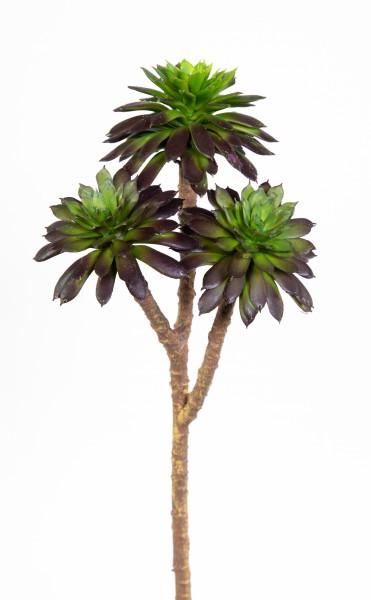 Sukkulente Sempervivum / Hauswurz mit 3 Köpfen 25x10cm grün-rot DP Kunstpflanzen künstliche Pflanze