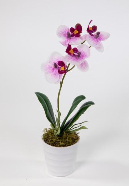 Orchidee Real Touch 28cm pink-weiß im weißen Dekotopf DP künstliche Blumen Orchideen Kunstpflanzen