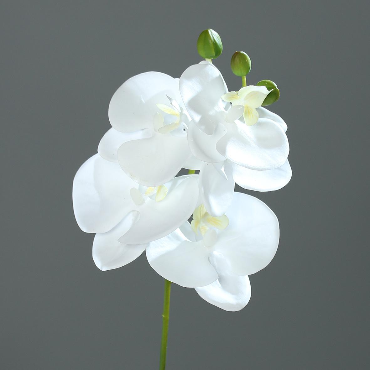 orchideenzweig real touch 36cm wei dp kunstblumen. Black Bedroom Furniture Sets. Home Design Ideas