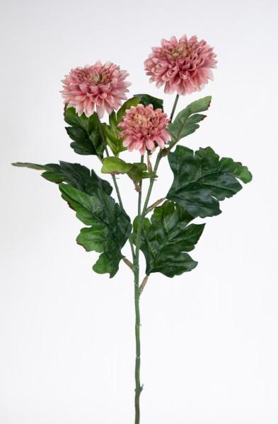 Asternzweig 54cm rosa CG Kunstblumen künstliche Aster Blumen Korbblütler Asteraceae