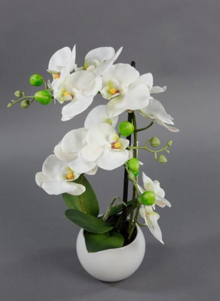 Orchidee Real Touch 50x20cm weiß in weißer Keramikvase GA Kunstblumen künstliche Blumen