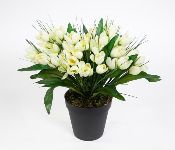 Krokusbusch 28cm weiß-creme im Topf PM Kunstpflanzen Kunstblumen künstlicher Crocus Krokus Blumen