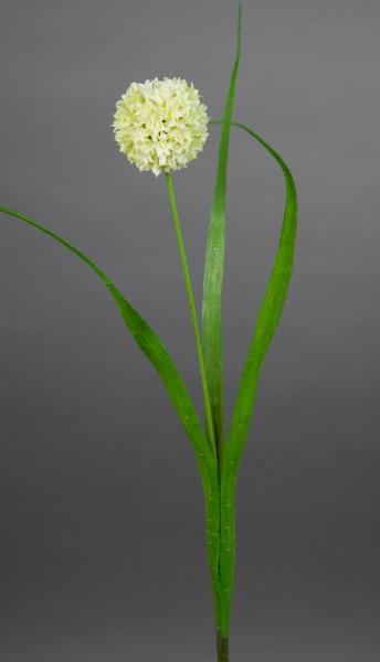 Allium mit Blätter 42cm weiß-creme FT Kunstblumen künstliche Blumen Alliumkugel