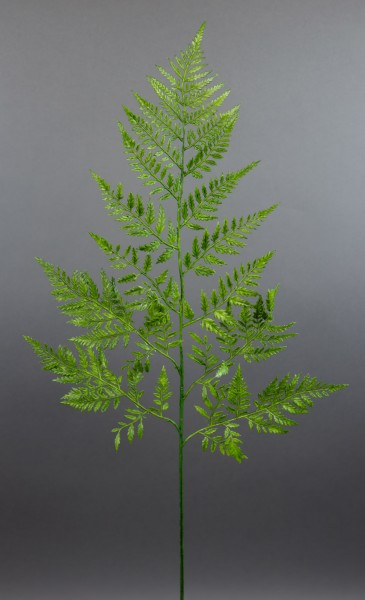 Farnzweig 80cm DP - Kunstpflanzen künstlicher Blattzweig Farnblatt Farnwedel