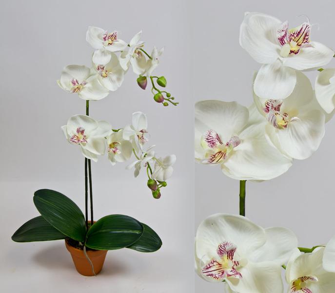 orchidee deluxe wei creme ad kunstblumen k nstliche. Black Bedroom Furniture Sets. Home Design Ideas