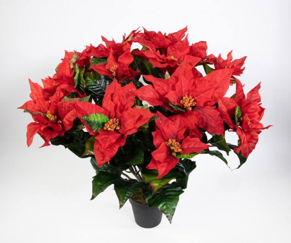 Weihnachtsstern 65x60cm im Topf rot PM künstliche Pflanze Blume Kunstpflanzen Kunstblumen Poinsettie