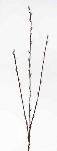 Weidenkätzchenzweig 75cm CG künstliche Weidenkätzchen Salix künstlicher Ast Palmkätzchen