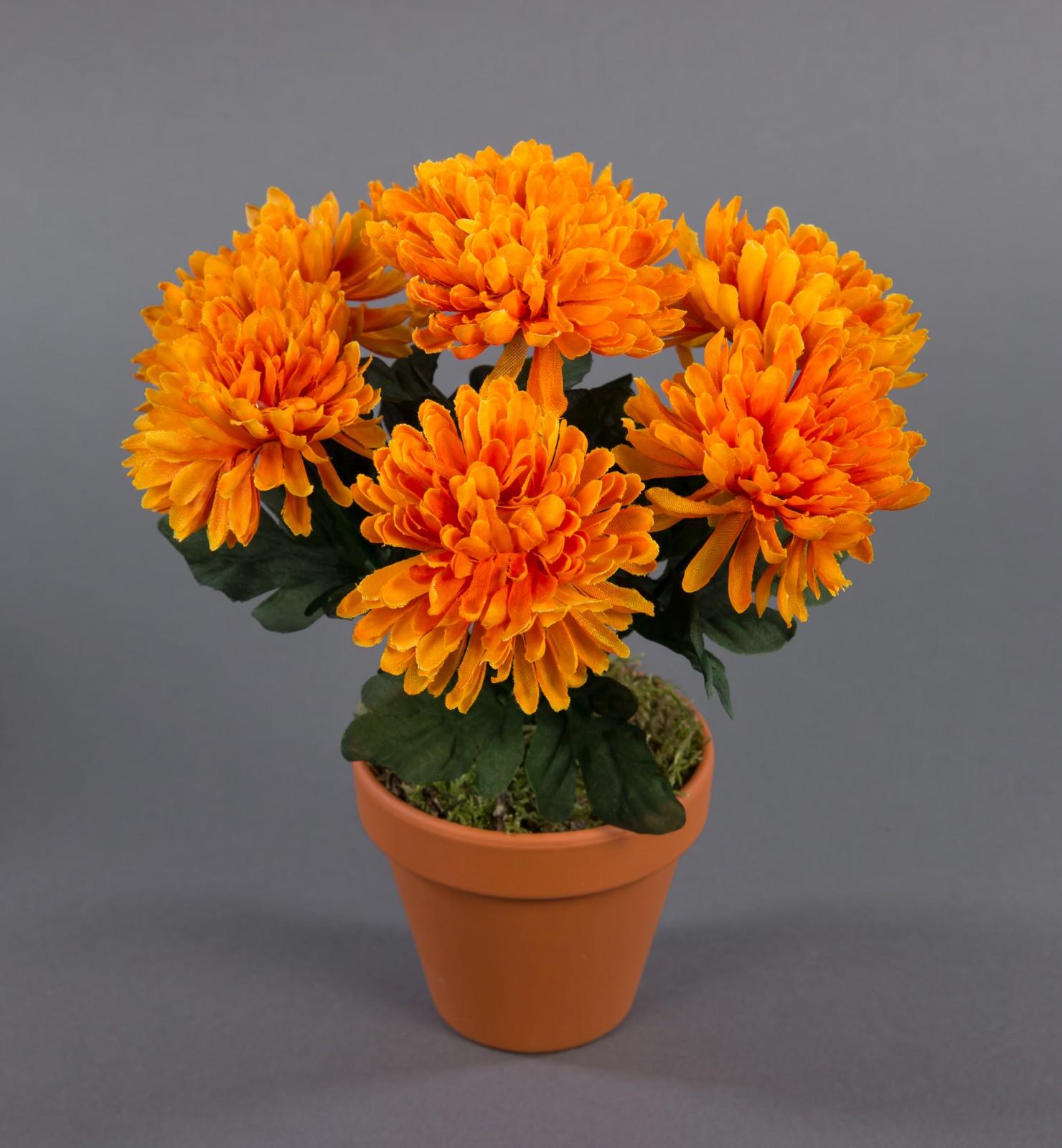 chrysanthemenbusch 26cm orange im topf dp kunstpflanzen k nstliche chrysantheme pflanzen blumen. Black Bedroom Furniture Sets. Home Design Ideas