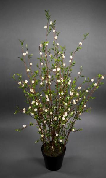 Maulbeerstrauch 90cm GA Kunstpflanzen künstliche Maulbeere Maulbeerpflanze Pflanzen