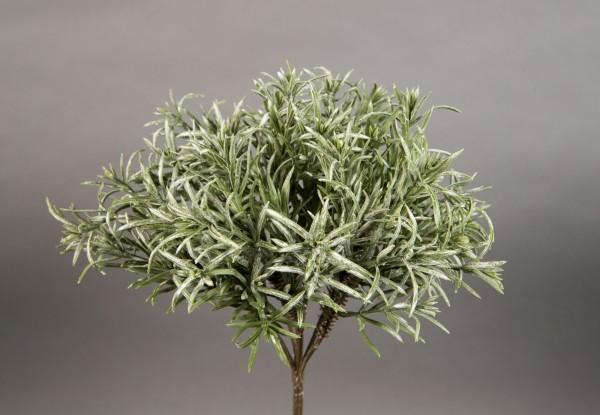 Podocarpusbusch 30cm grün-grau CG Kunstpflanzen künstliche Pflanzen Podocarpus
