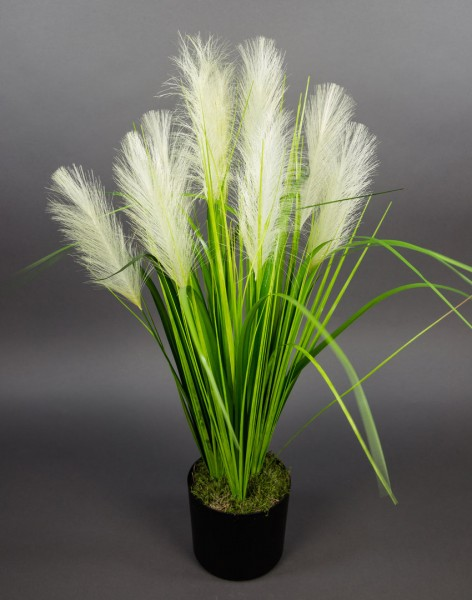Palmengrasbusch 75cm im Topf DP Kunstpflanzen Kunstgras künstliches Gras Palmengras Grasbusch