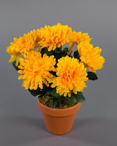 Chrysanthemenbusch 26cm gelb im Topf DP Kunstpflanzen künstliche Chrysantheme Pflanzen Blumen