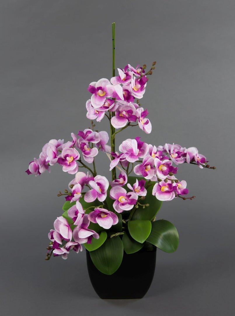 orchideen arrangements orchideen kunstblumen. Black Bedroom Furniture Sets. Home Design Ideas