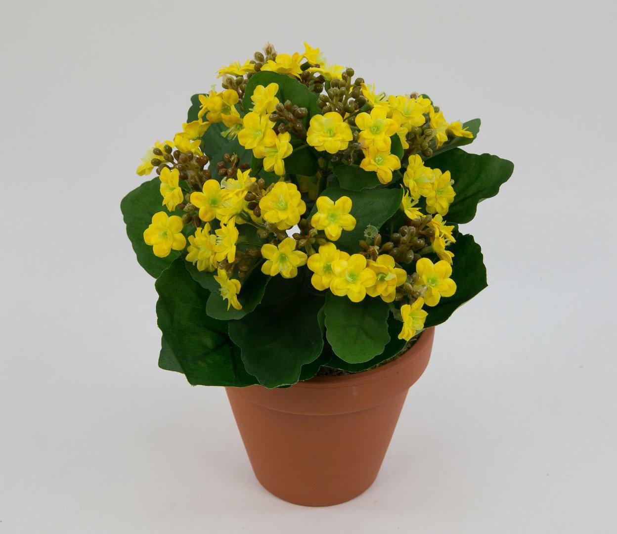 kalanchoe 22cm gelb im topf lm kunstpflanzen kunstblumen. Black Bedroom Furniture Sets. Home Design Ideas