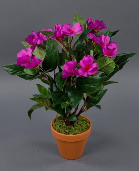 Impatiens / Fleißiges Lieschen 38cm fuchsia im Topf LM künstliche Blumen Kunstpflanzen Kunstblumen