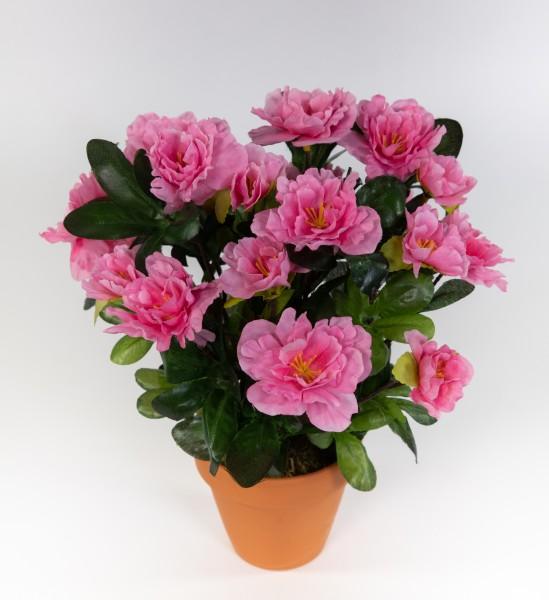 Azalee 24cm rosa-pink im Topf LA künstliche Blumen Pflanzen Kunstpflanzen Kunstblumen