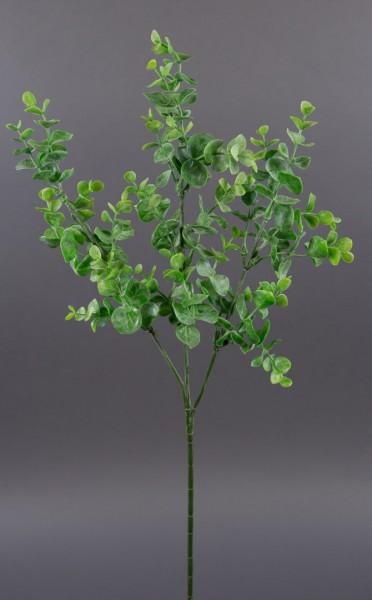 Eukalyptuszweig 64cm LM Kunstzweig künstliche Zweige Kunstpflanzen künstlicher Eukalyptus
