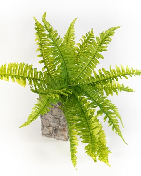 Boston-Farnbusch hellgrün 60cm -ohne Topf- GA Kunstpflanzen Kunstfarn künstlicher Farn Bostonfarn