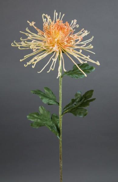 Spinnenchrysantheme 80x20cm hellgelb-peach CG Kunstblumen künstliche Chrysantheme Blumen